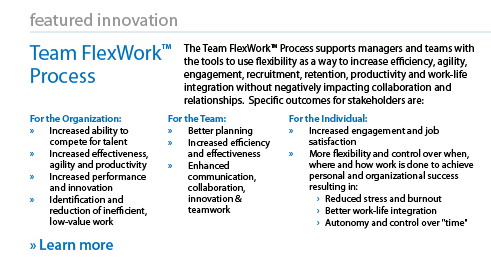 Team FlexWork Process
